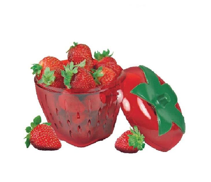 Θήκη Συντήρησης Φράουλας Veltihome είδη σπιτιού