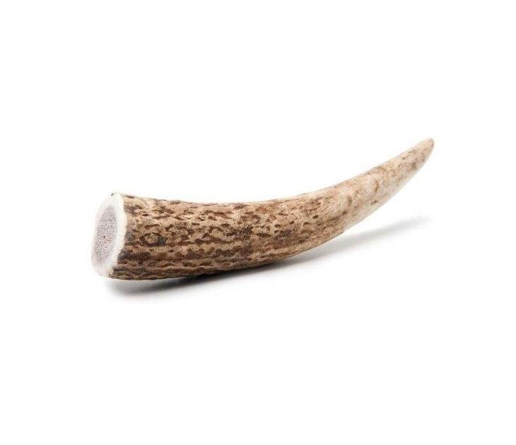 Κέρατο Ελαφιού Chew Chew Natural Deer Mini 50-70gr κόκκαλα σκύλου